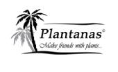 Tee und Nüsse als Werbeartikel im Plantanas Shop von Kicks